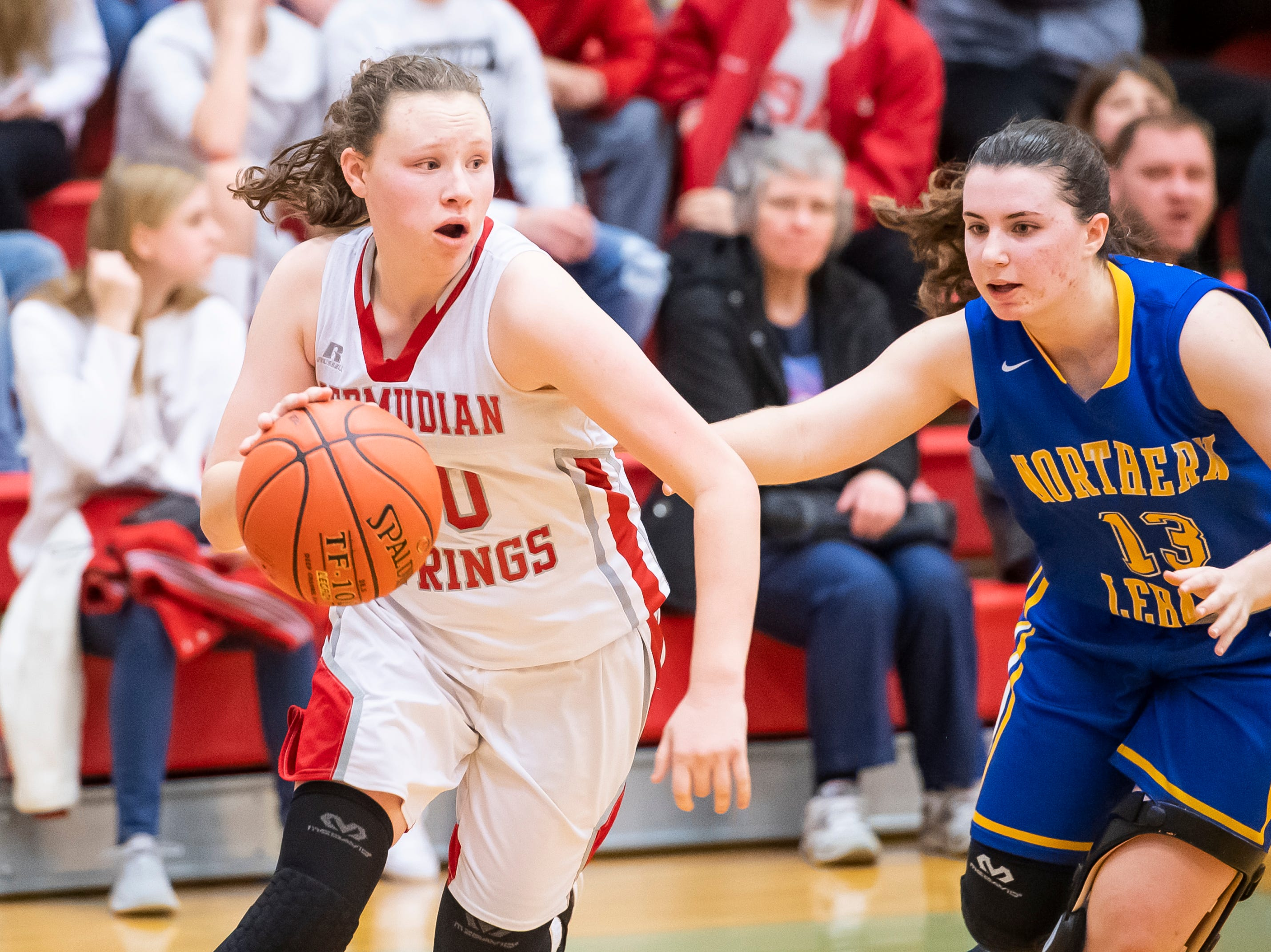 Bermudian Springs' Hannah Chenault drives into the paint during play against Northern Lebanon in the first round of the District III 4-A playoffs Tuesday, February 19, 2019. The Eagles won 58-52.