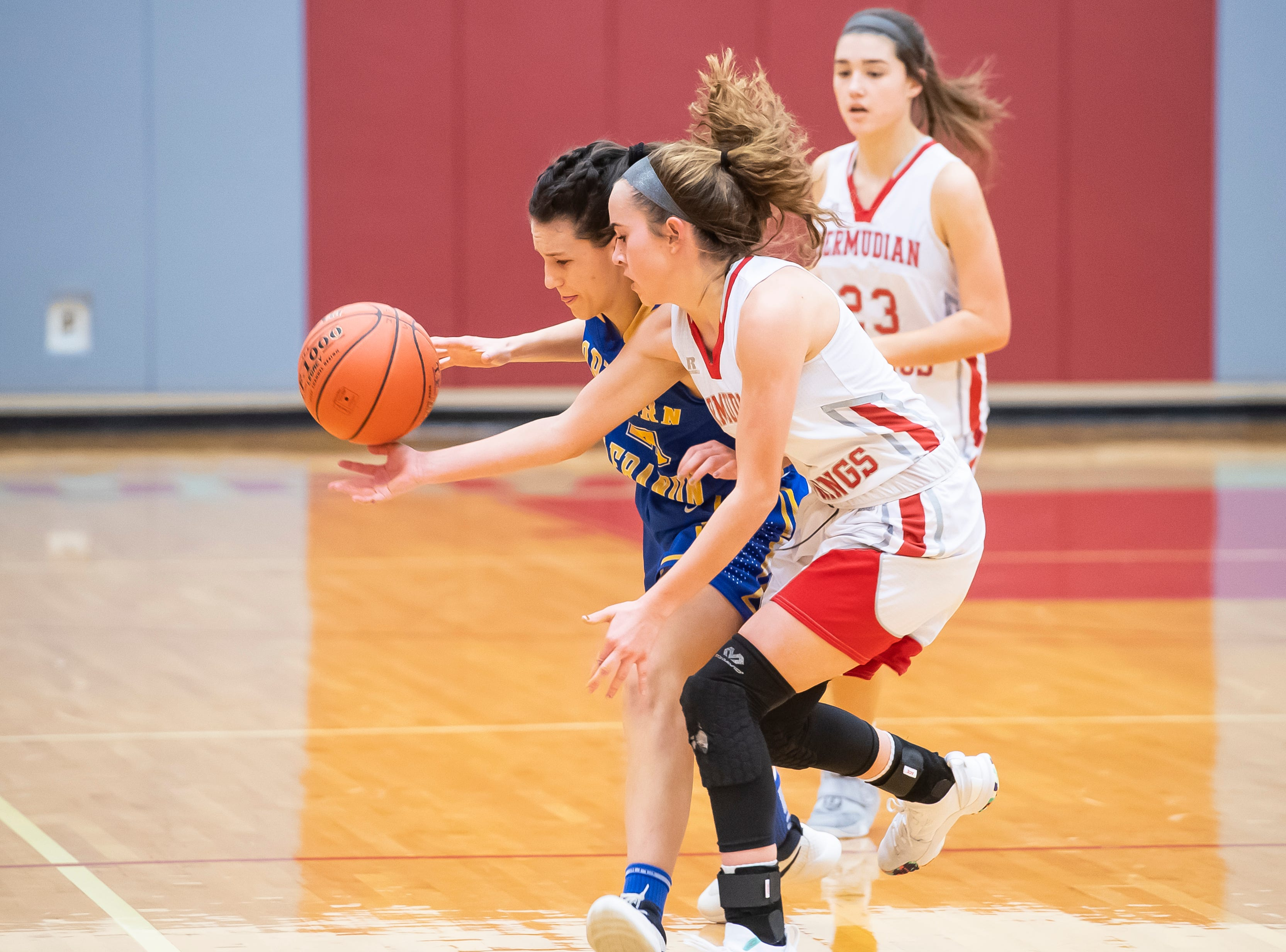 Bermudian Springs' Skyler West, right, pokes the ball out of the hands of Northern Lebanon's Zara Zerman in the first round of the District III 4-A playoffs Tuesday, February 19, 2019. The Eagles won 58-52.