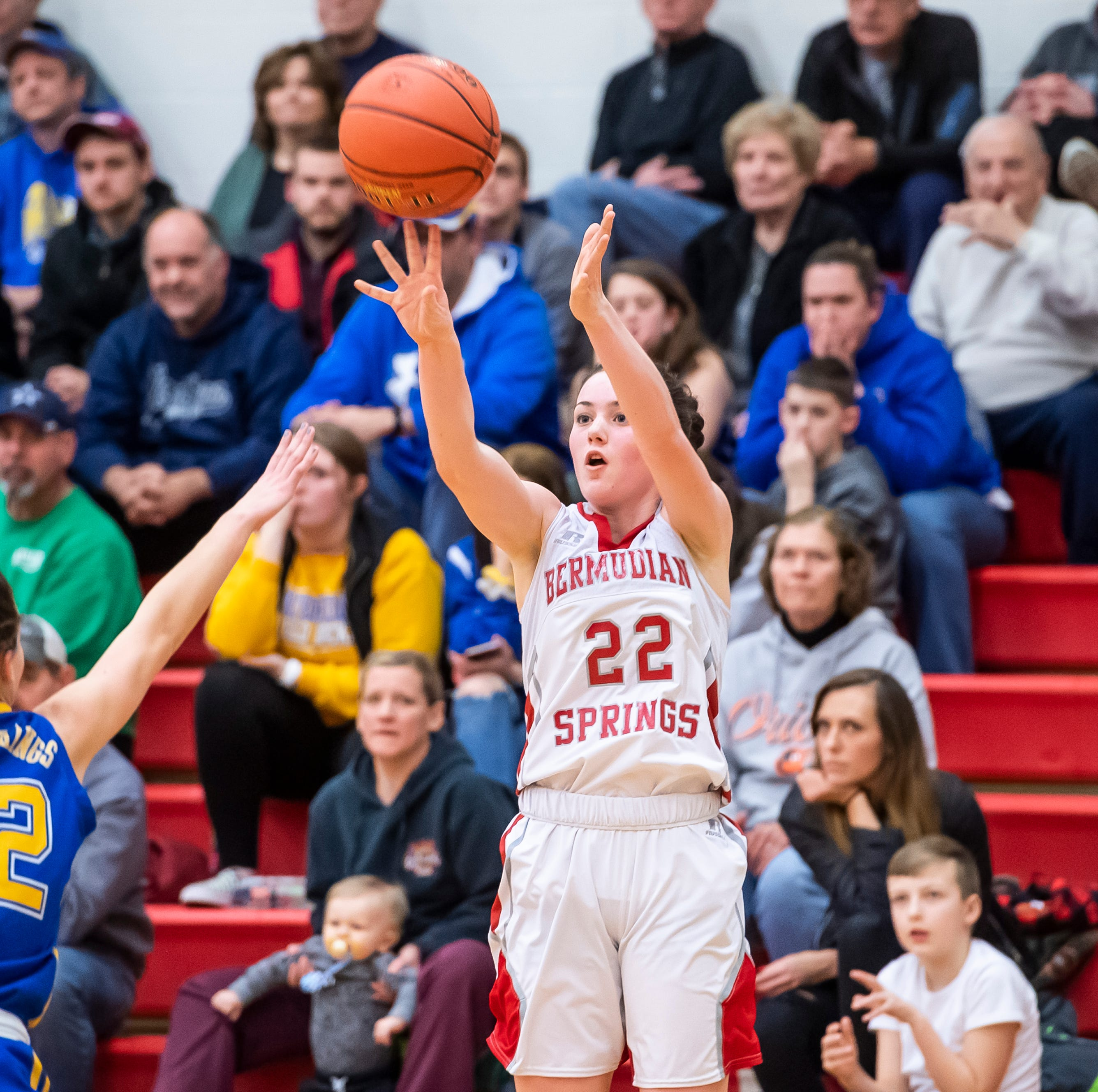 Northern Lebanon's season ends in first round loss Bermudian Springs basketball