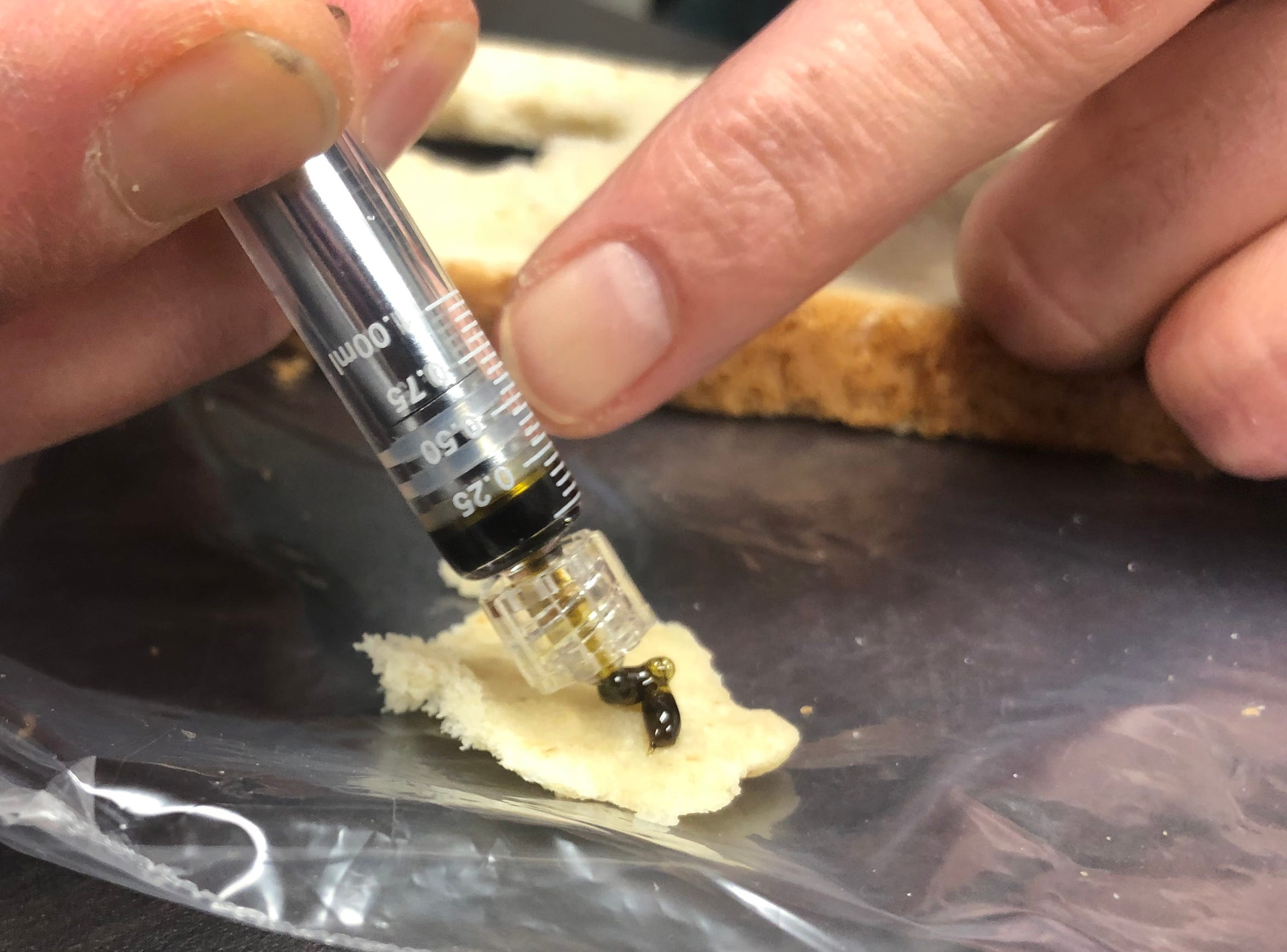 Peter DeVitis spreads some medical marijuana oil on to a piece of bread the afternoon of Tuesday, Feb. 19. DeVitis began using the product last spring to treat his chronic pain caused by diabetes.