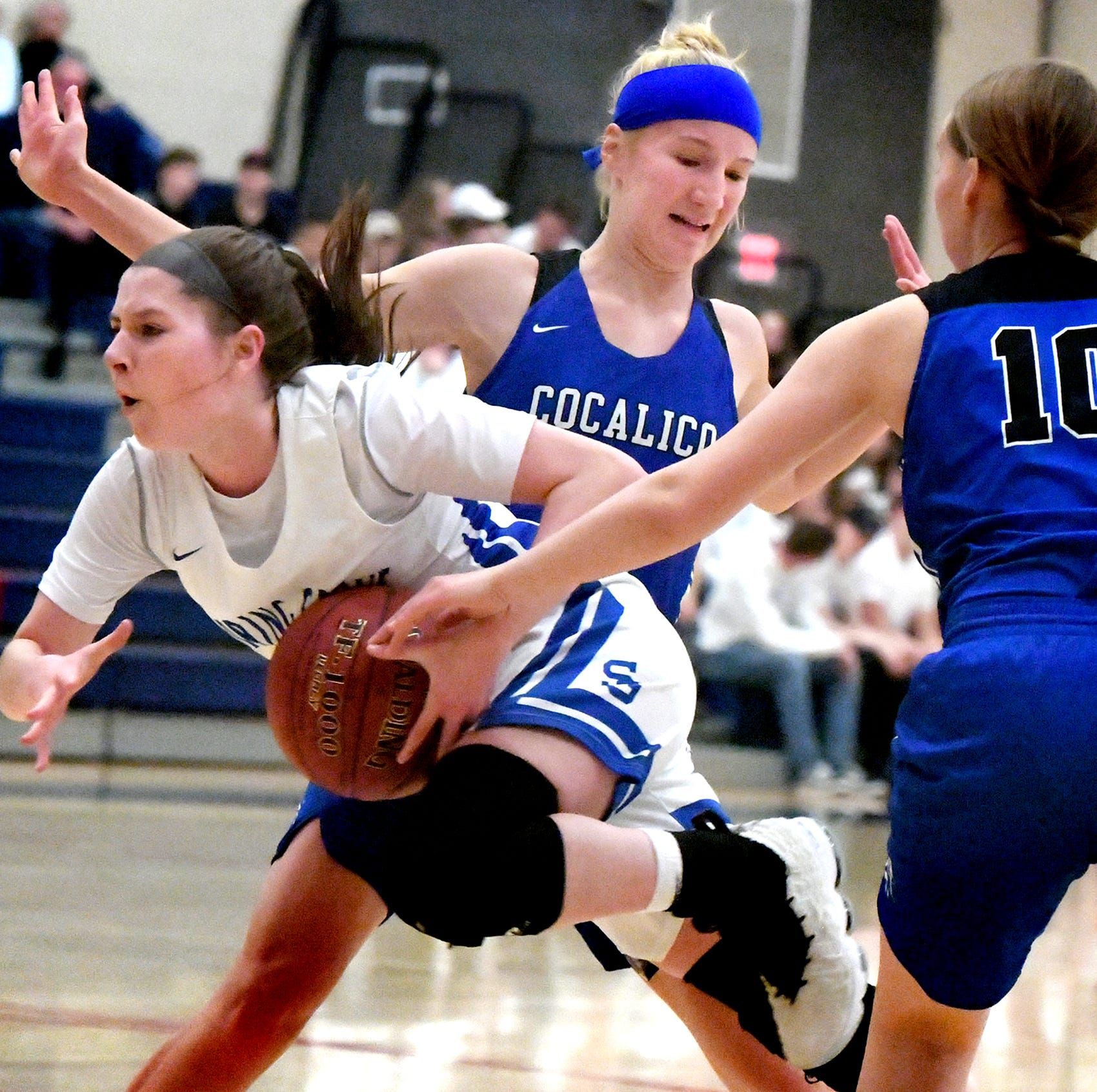 DISTRICT 3 GIRLS' BASKETBALL: Spring Grove punches state playoff ticket