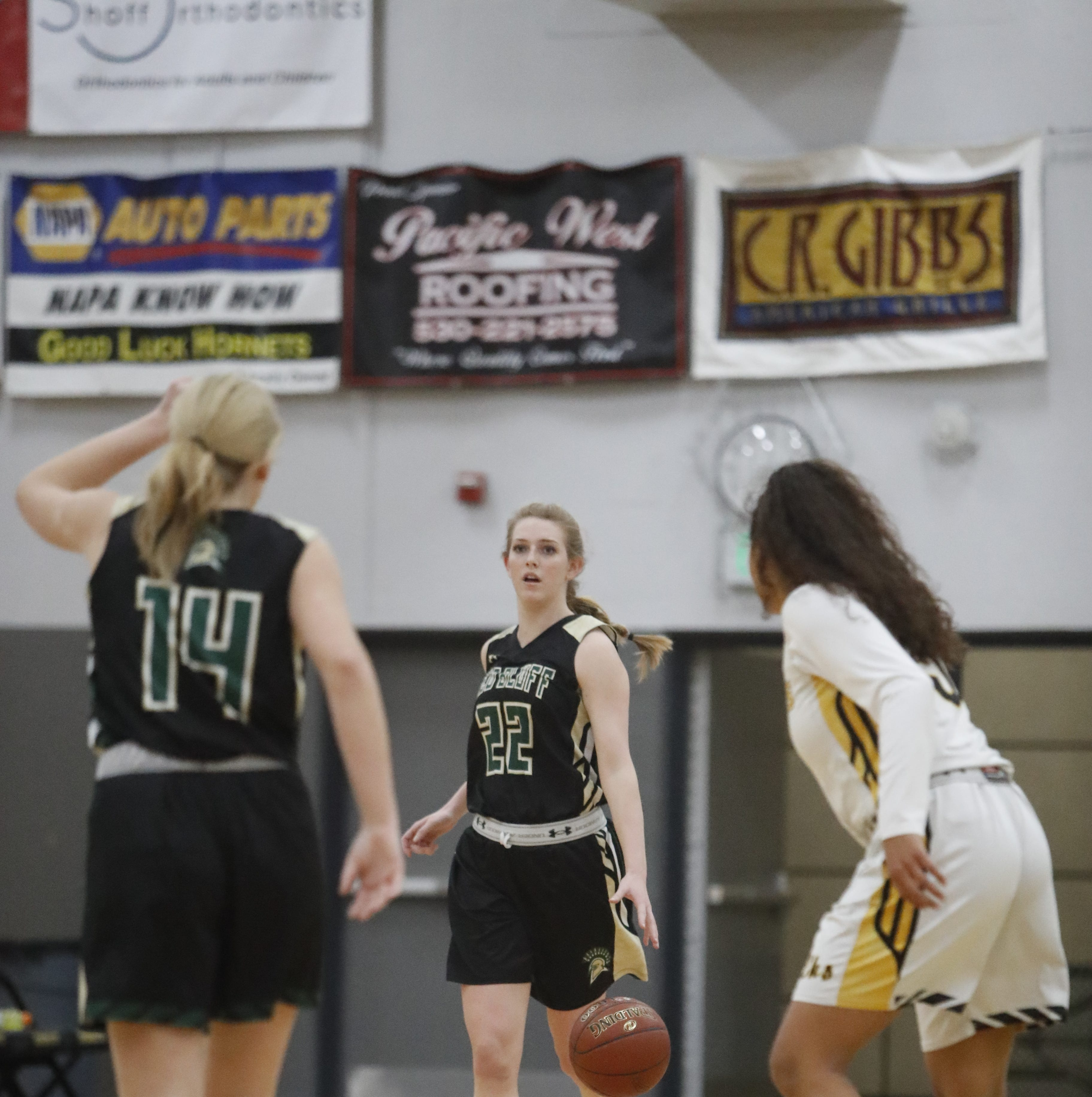 15 Redding-area basketball players make all-Northern Section teams for 2018-19 season