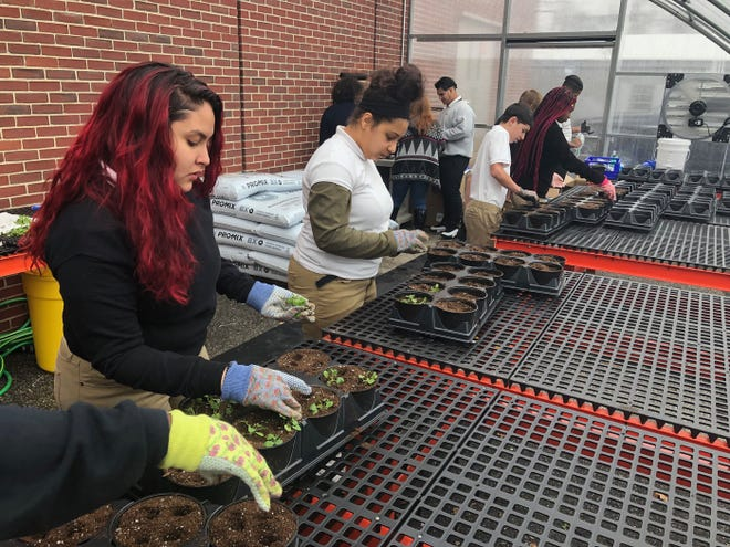 Students at Cunningham Academy will have an opportunity to learn about growing food and plants in their new greenhouse.