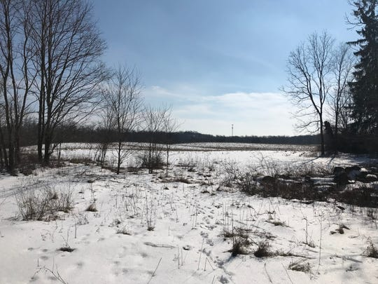 Richland Residential out of Cleveland plans to develop more than 300 luxury apartments on undeveloped land in Emmett Charter Township off of 6 Mile Road.