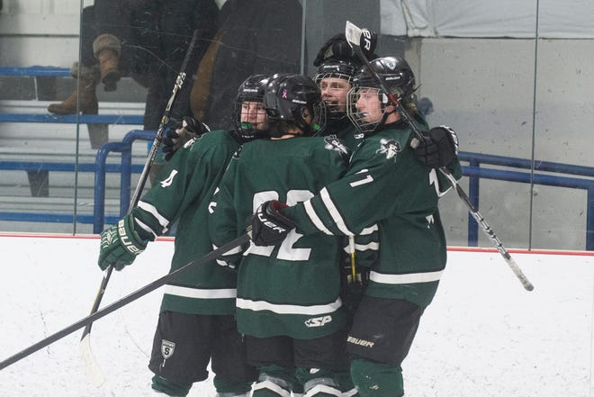 Stowe celebrates a goal during the boys hockey game between the Stowe Raiders and the Rice Green knights at Cairns Arena on Wednesday night February 20, 2019 in South Burlington, Vermont.
