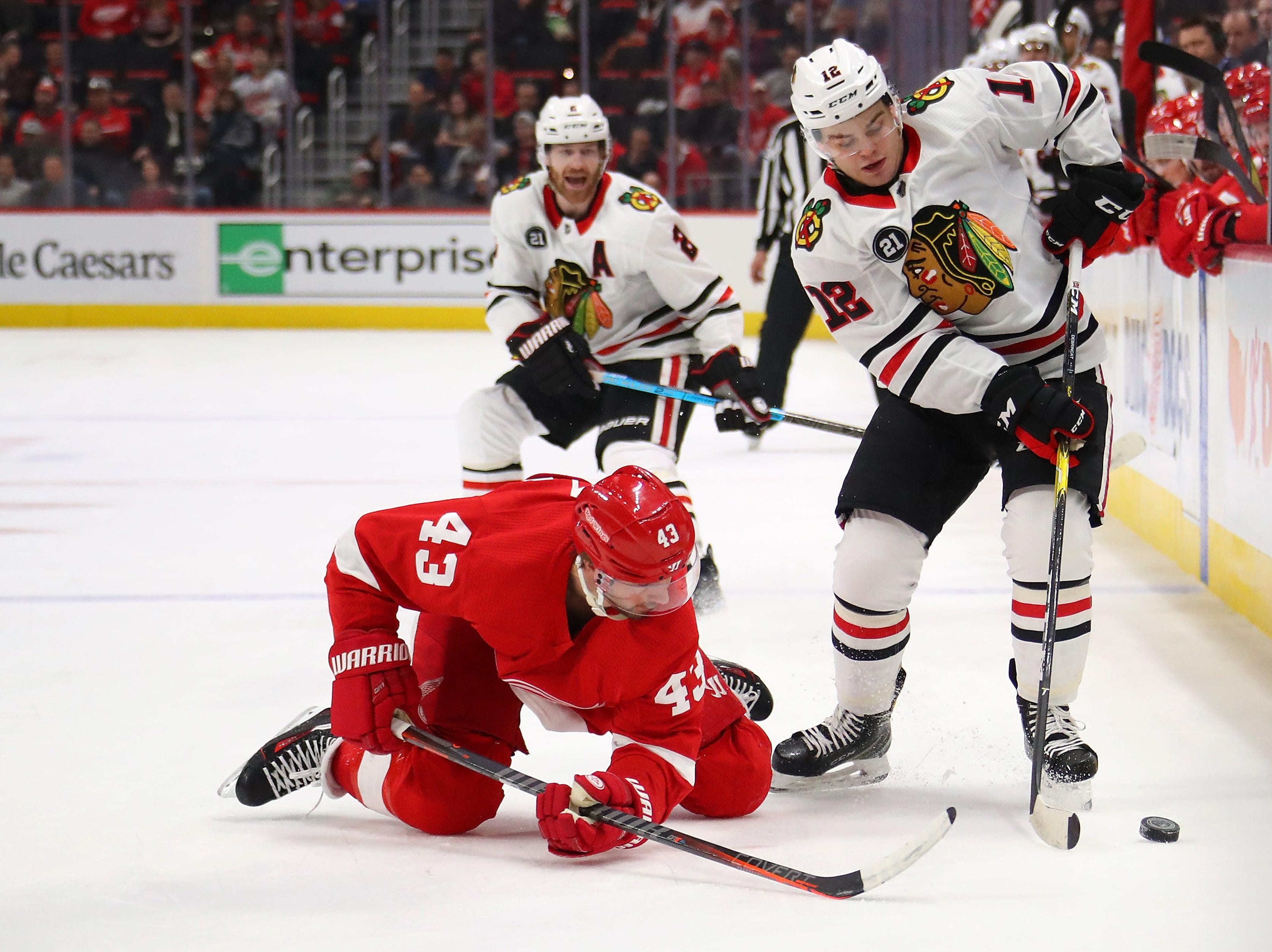 Alex DeBrincat #12 of the Chicago Blackhawks tries to gain control of the puck next to Darren Helm #43 of the Detroit Red Wings during the first period at Little Caesars Arena on February 20, 2019 in Detroit, Michigan.