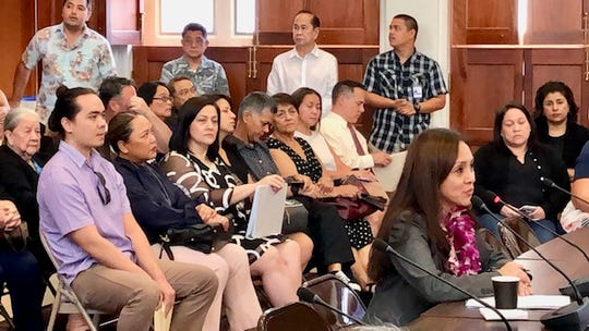 In this file photo, Department of Revenue and Taxation Acting Director Dafne Shimizu answers questions from senators during her confirmation hearing.