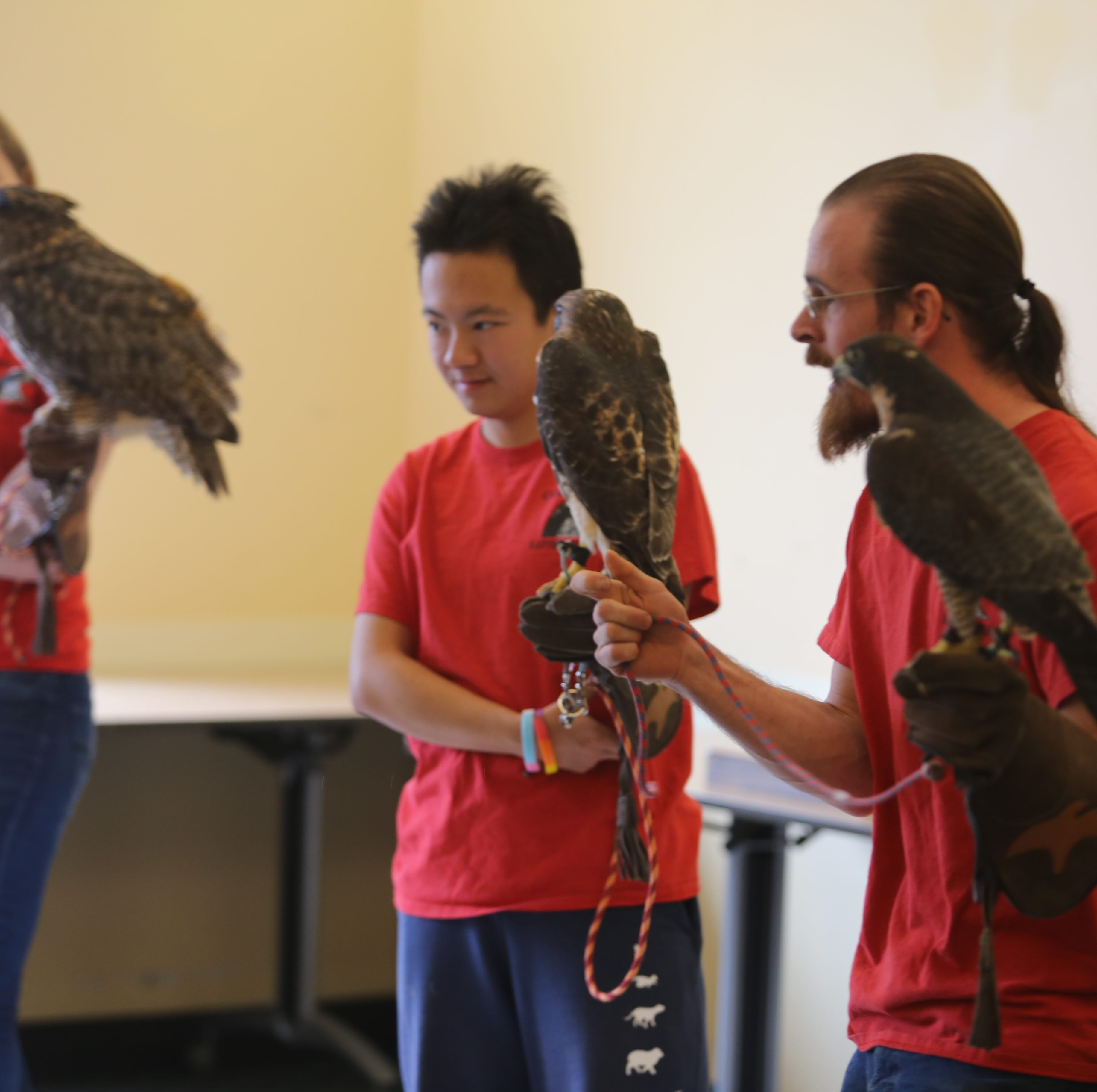 Cornell Raptor Program shows birds of prey to full audience of children and family members
