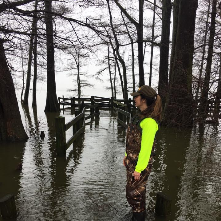 Flooding causes closures in Lake, Obion counties, and at Reelfoot State Park