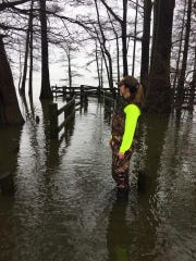 A ranger at the Reelfoot State Park stands in flood water where dry ground usually is above the boardwalk on Thursday.