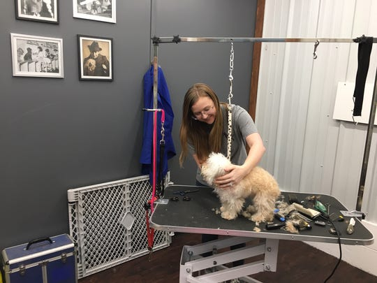 Little Abby isn't so sure about the grooming table. Katelyn DeCort assures her everything's all right. The Spot 4 Dogs' groomer is Clint Epps.
