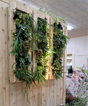 Vertical gardens are gaining popularity with homeowners and renters whose outdoor space is limited to a patio or a balcony.