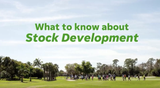 Here's what to know about Stock Development.