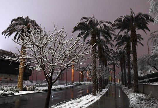 Nieve cubre árboles y palmas en Las Vegas, Nevada.