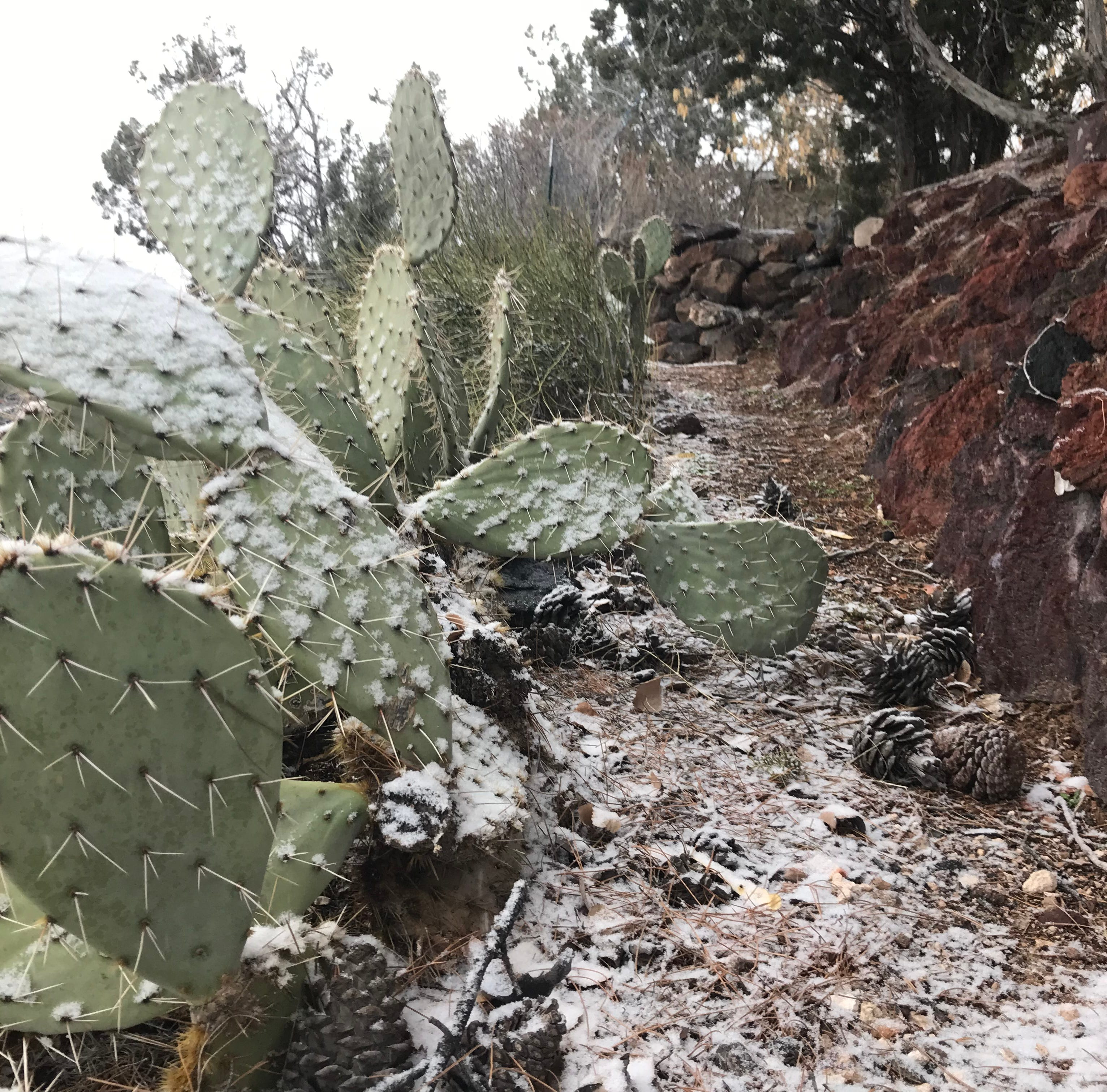 St. George officials warn residents to get ready for snow