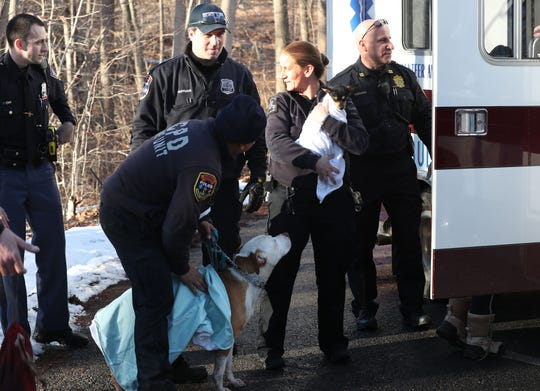 Westchester County Police and Westchester EMS paramedics warm the two dogs with towels after they fell through the ice at Cranberry Lake Preserve in North White Plains Feb. 21,  2019. A man and a woman fell through the ice after trying to save their two dogs that had fallen through the ice also. The man and woman were transported to Westchester Medical Center by Valhalla Ambulance Corps.