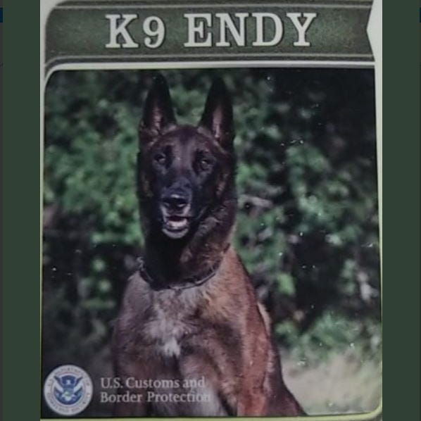 Texas Border Patrol agent will be reunited with his retired K9 after lawsuit dismissed