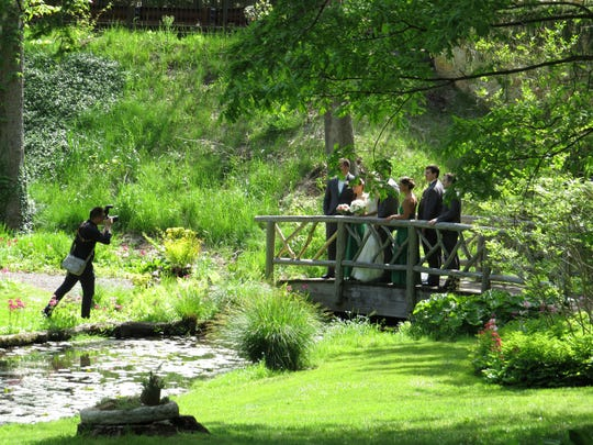 Wedding photography at Leonard J. Busk Garden in Far Hills.