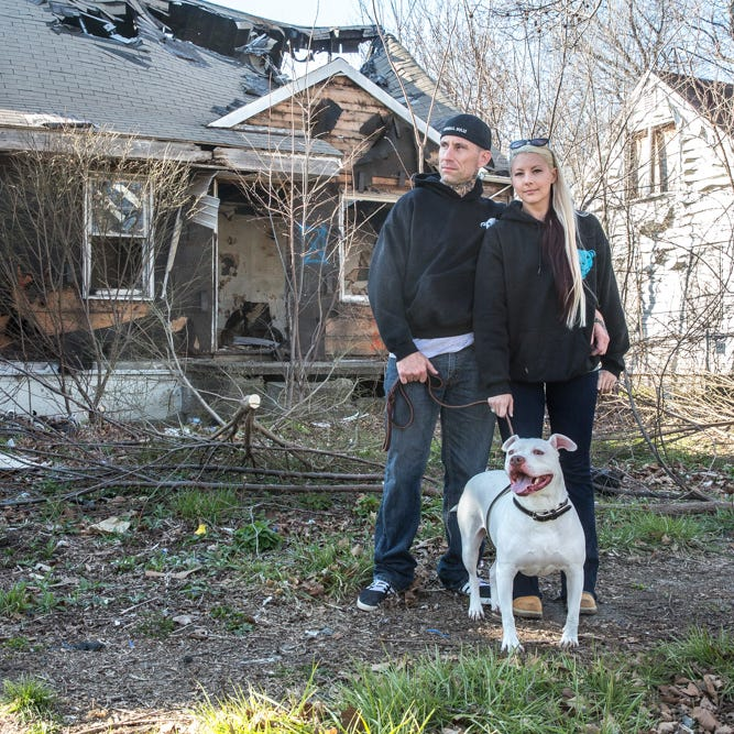 Downriver dog rescuers in legal fight with 'Pit Bulls and Parolees' star