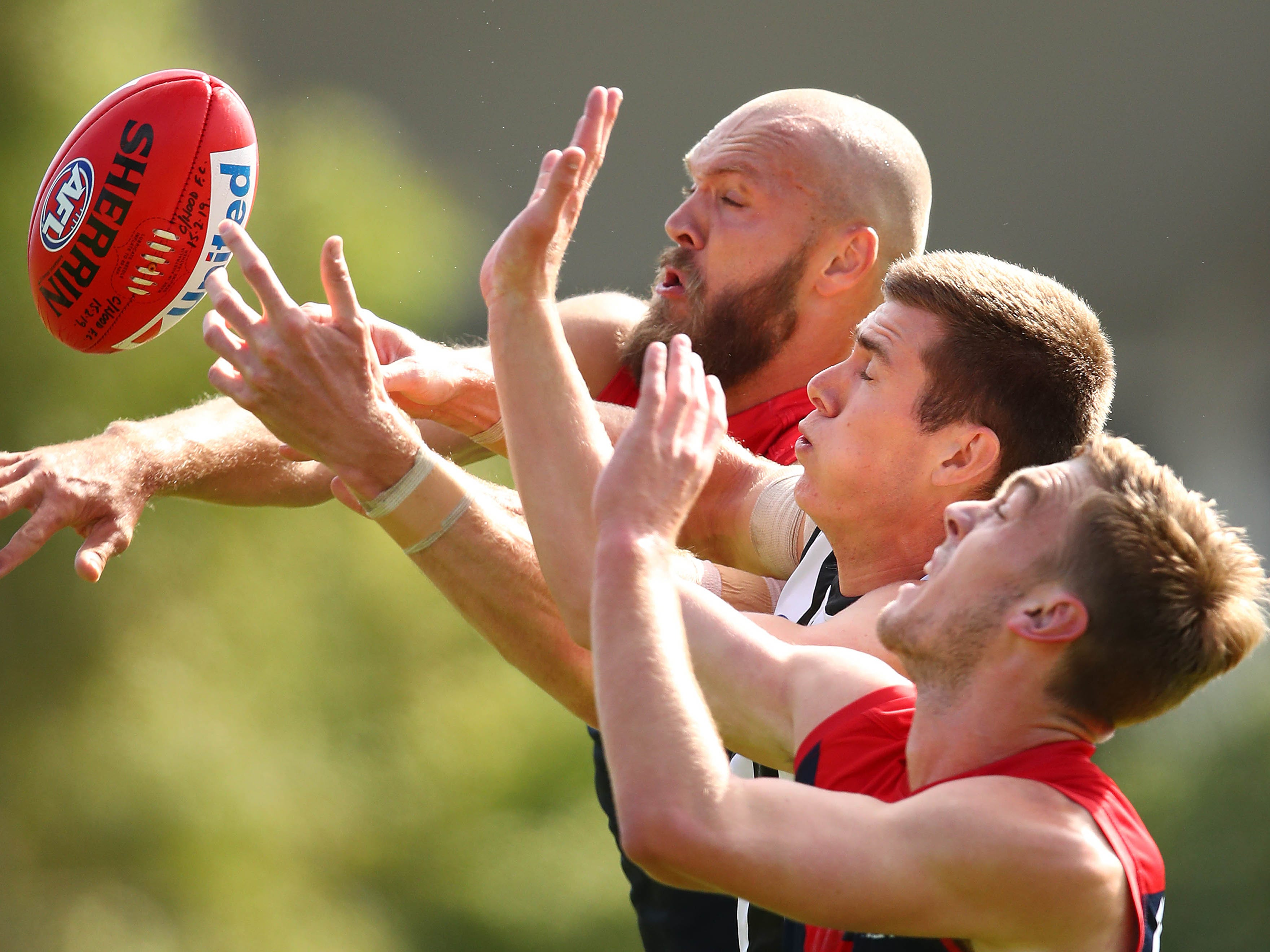 Max Gawn of the Demons and Mason Cox of the Magpies compete in an Australian football practice match between Collingwood and Melbourne at Olympic Park Oval on Feb. 22, 2019 in Melbourne.