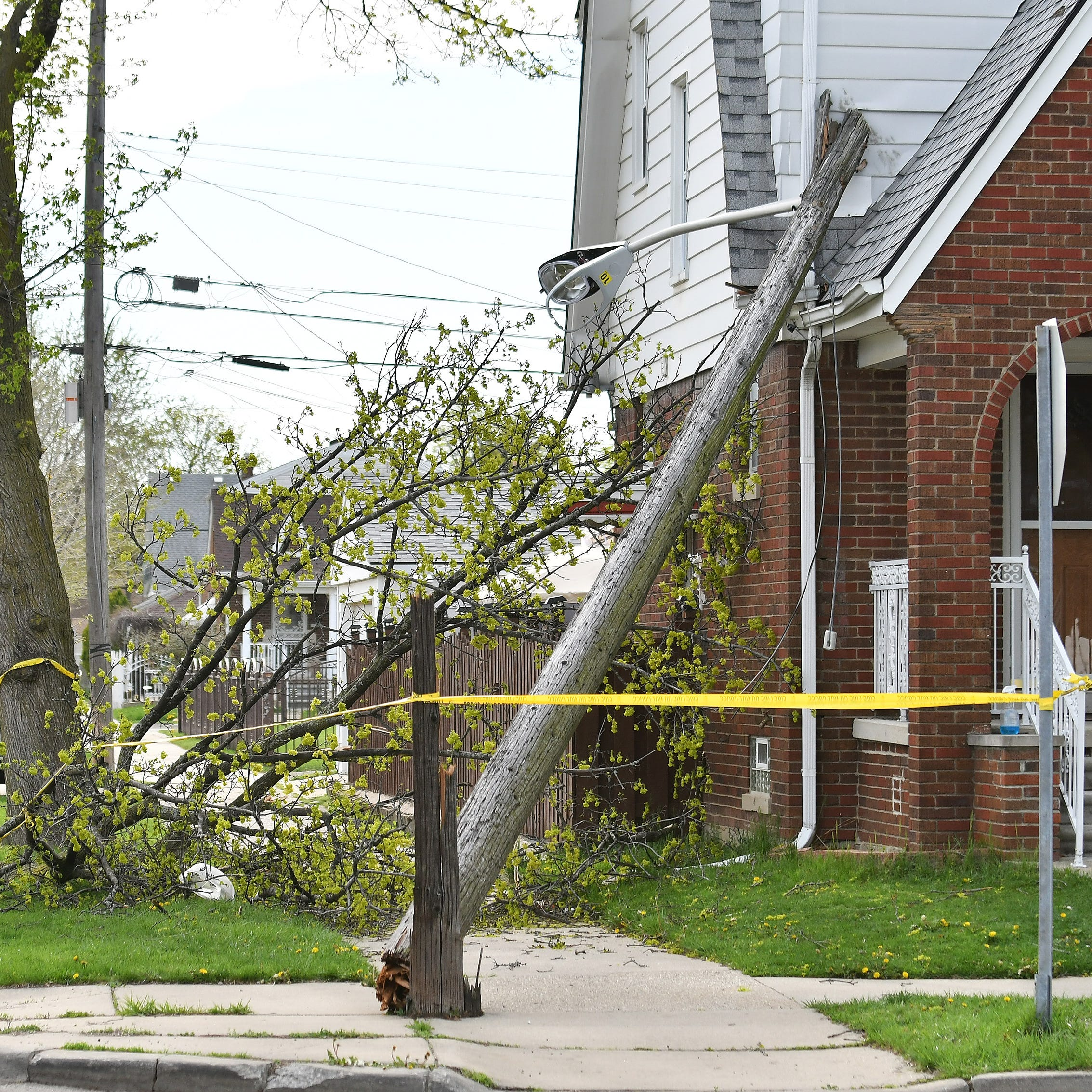 A large limb from a tree came down on power lines...