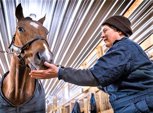 Veterinarian Barbara Mix stops by a stable near Horseheads to check on an injured show horse.