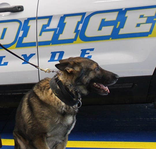 K-9 Lasso, a German shepherd, is helping keep drugs off the streets in Clyde.