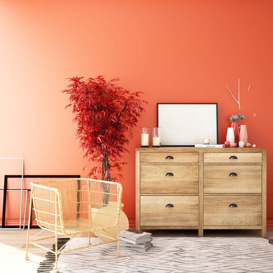 Living coral is the 2019 Pantone Color of the Year.