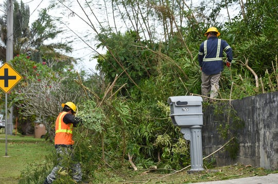 Guam Power Authority workers trim tree branches in Chalan Pago during Guam's Condition of Readiness 3 status for Typhoon Wutip, Feb. 22, 2019.