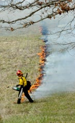 Using a hand-held drip torch, Cherie Cordell lights a fire line Tuesday running parallel to Hyatt Lane in Cades Cove as firefighters with the Great Smoky Mountains National Park perform a controlled burn on Tuesday, February 11, 2008