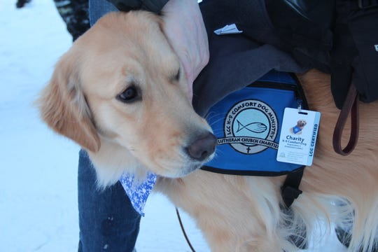 Charity, a golden retriever trained as a comfort dog by Lutheran Church Charities, was brought to the Wisconsin Hero Outdoors ice fishing outing to interact with military veterans.