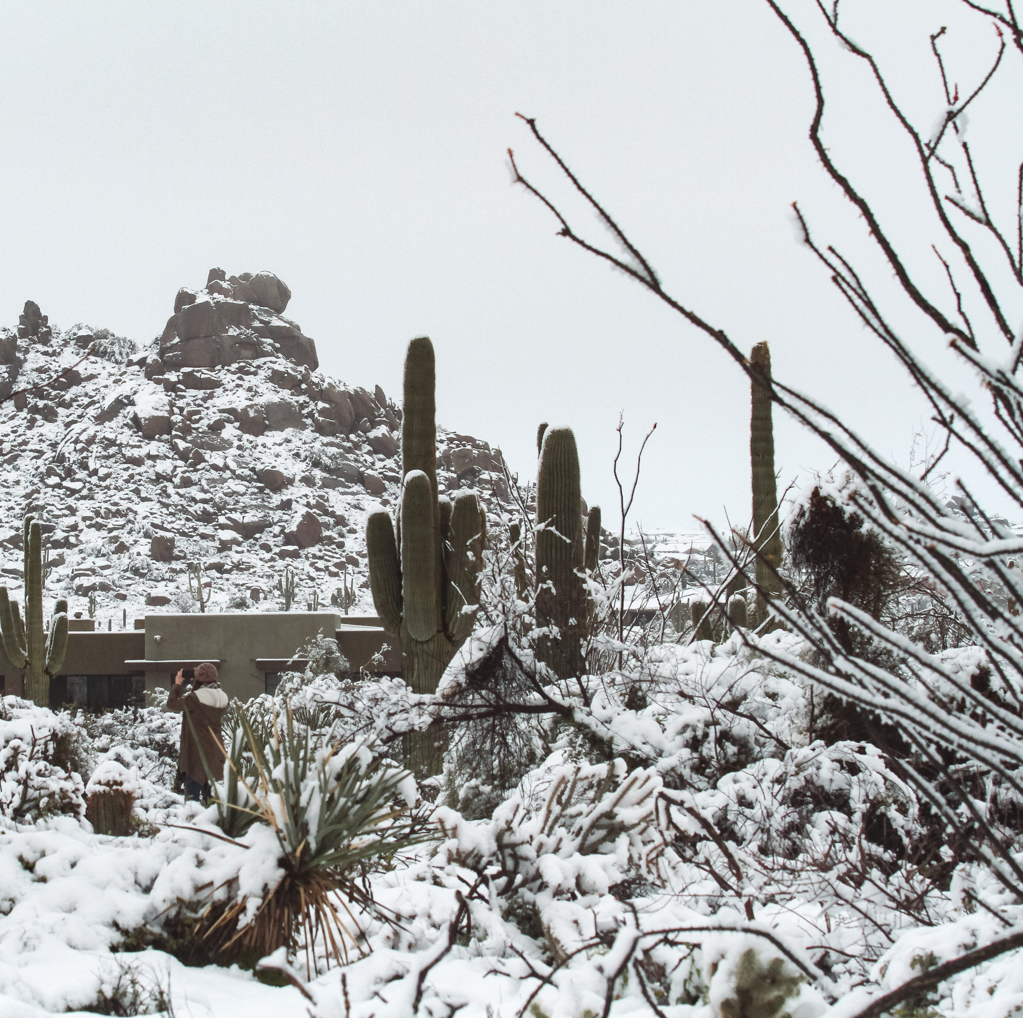 It snowed across Arizona and people posted the best photos