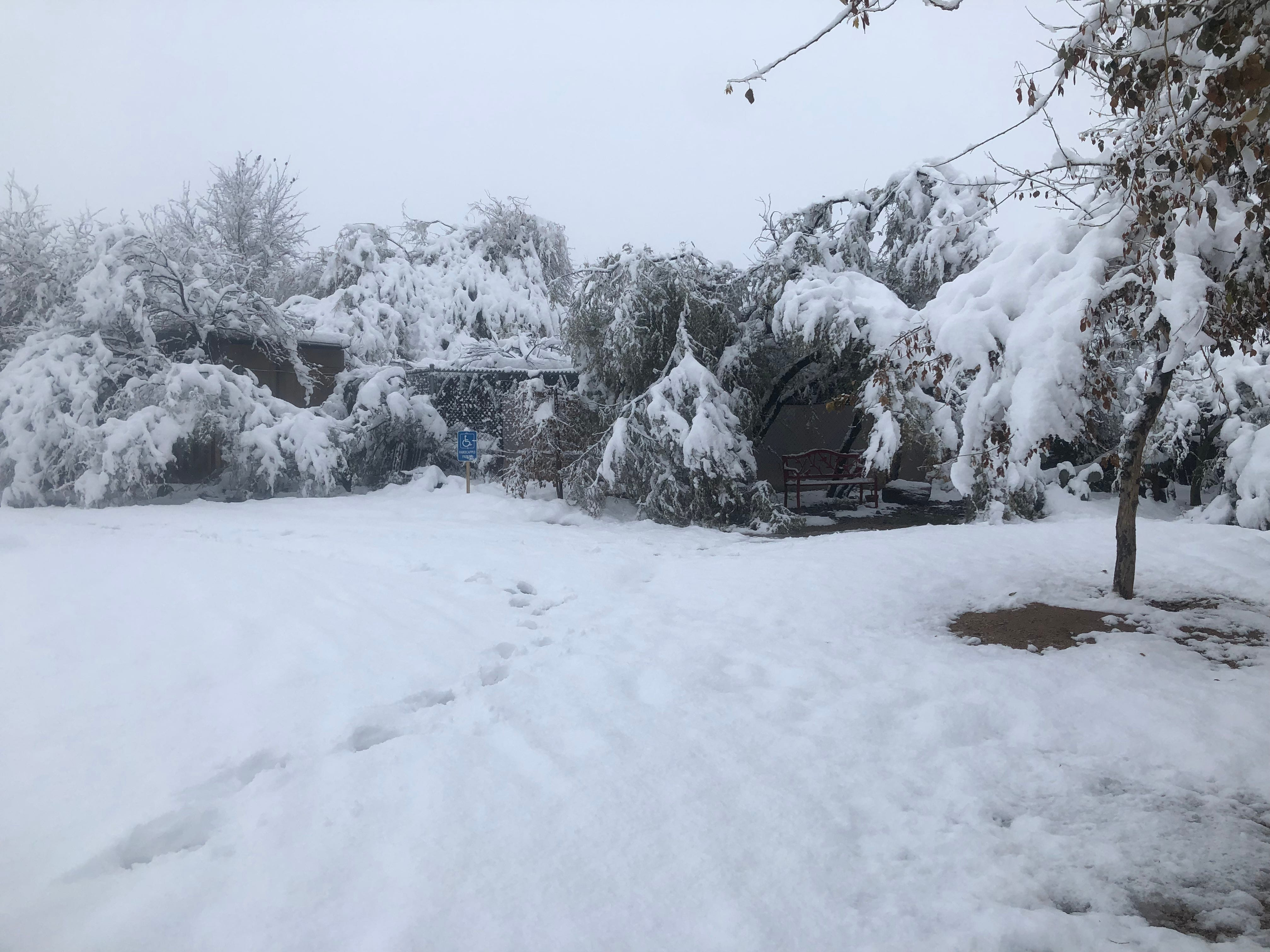 Southwest Wildlife Conservation Center covered in snow