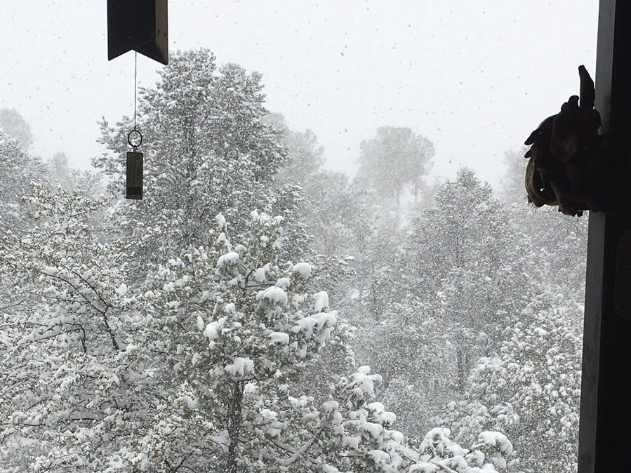 """Dr. Julie Armstrong posted this picture to Twitter saying """"Hella snow in Payson!"""""""