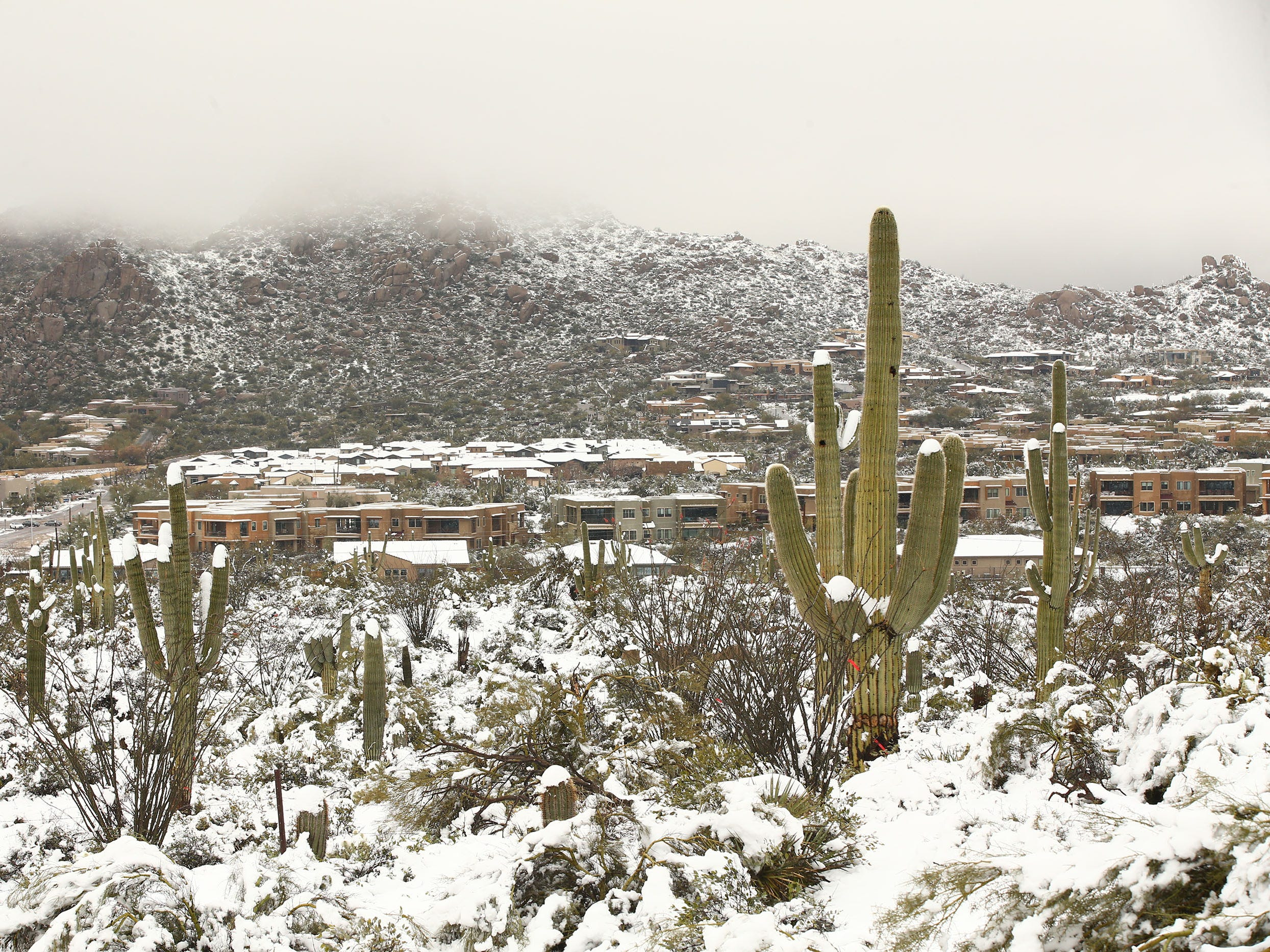 A powerful winter storm brought 6 inches of snow to the area around Pinnacle Peak on Feb. 22, 2019, in Scottsdale.