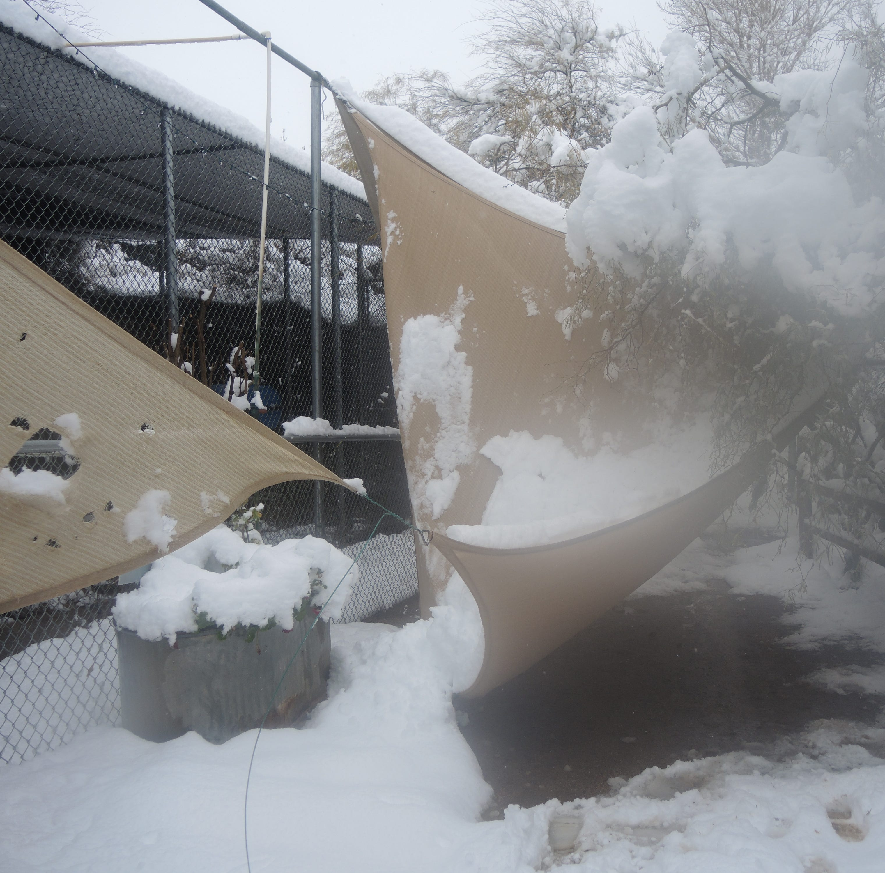 Arizona storm updates: Snow damages wildlife center in Scottsdale; wet roads causing spinouts