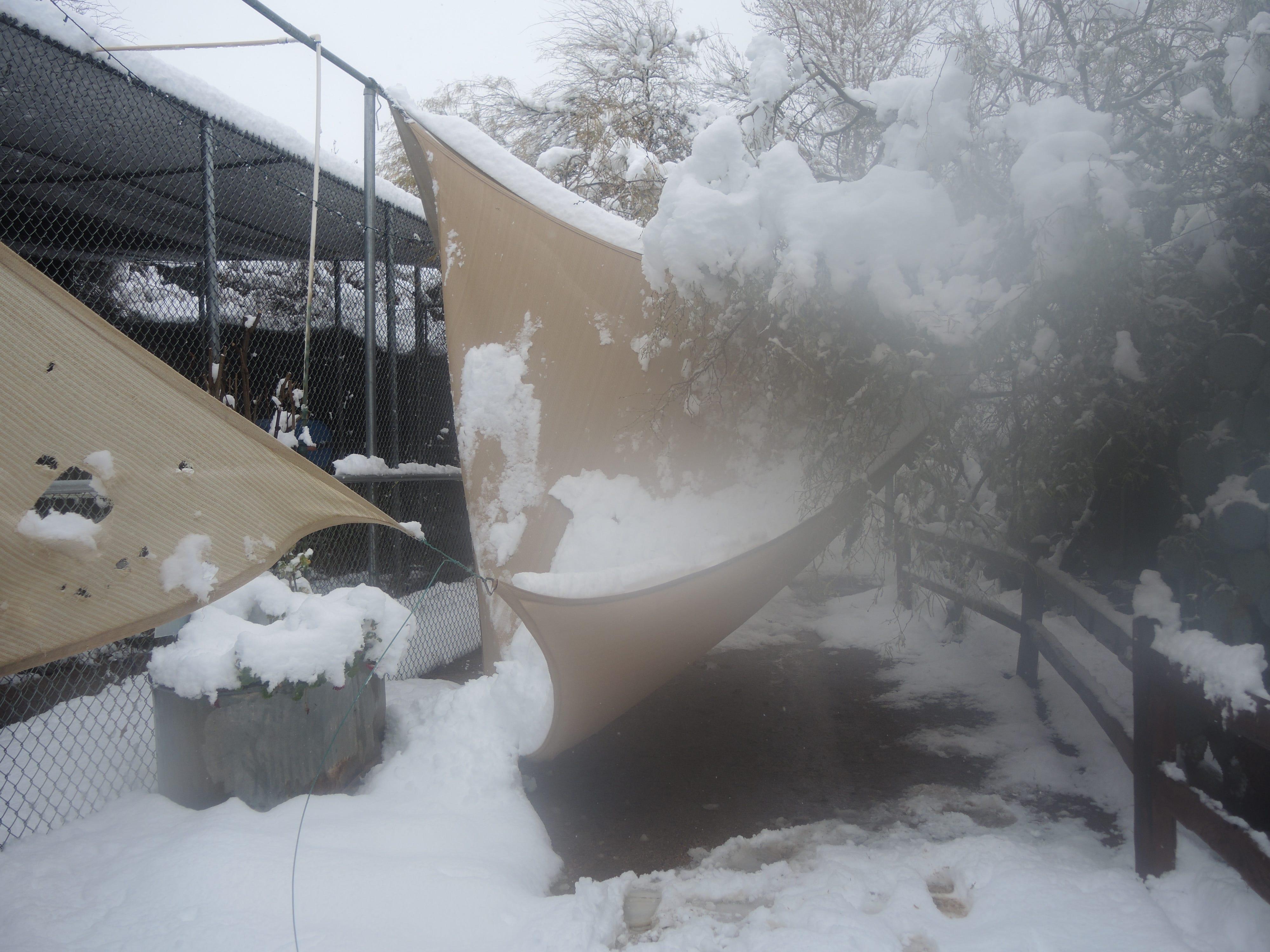 Damages at Southwest Wildlife Conservation Center