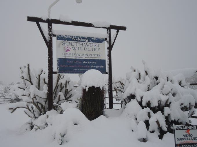 Snow, cold weather cause estimated $50K in damage to wildlife center