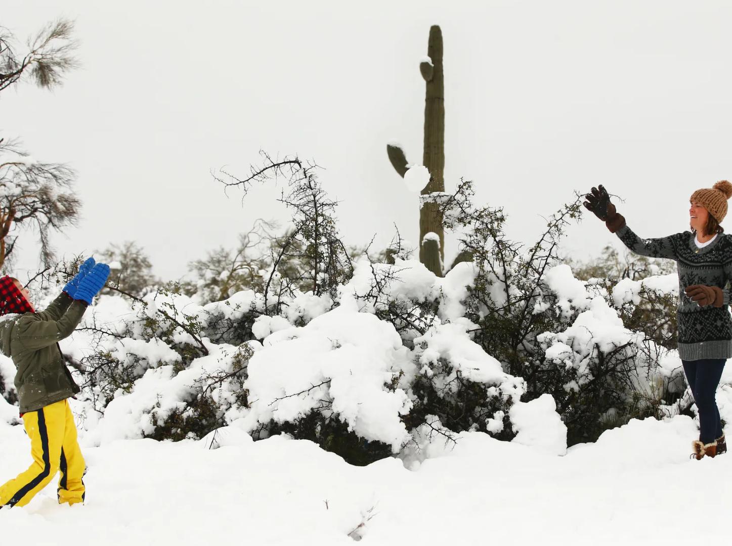 Como no pasaba en mucho años, la nieve bajó de la sierra y llegó con intensidad a Tucson y norte de Scottsdale propiciando un espectáculo para la gente el 22 de febrero, 2019