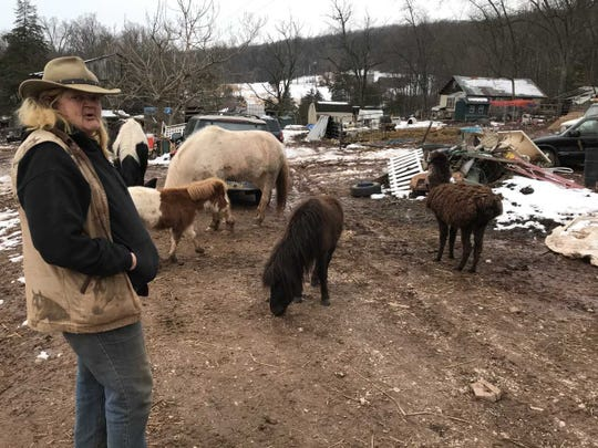 Cheryl Dinges lives on a 15-acre spread that is home to a menagerie of rescued critters.
