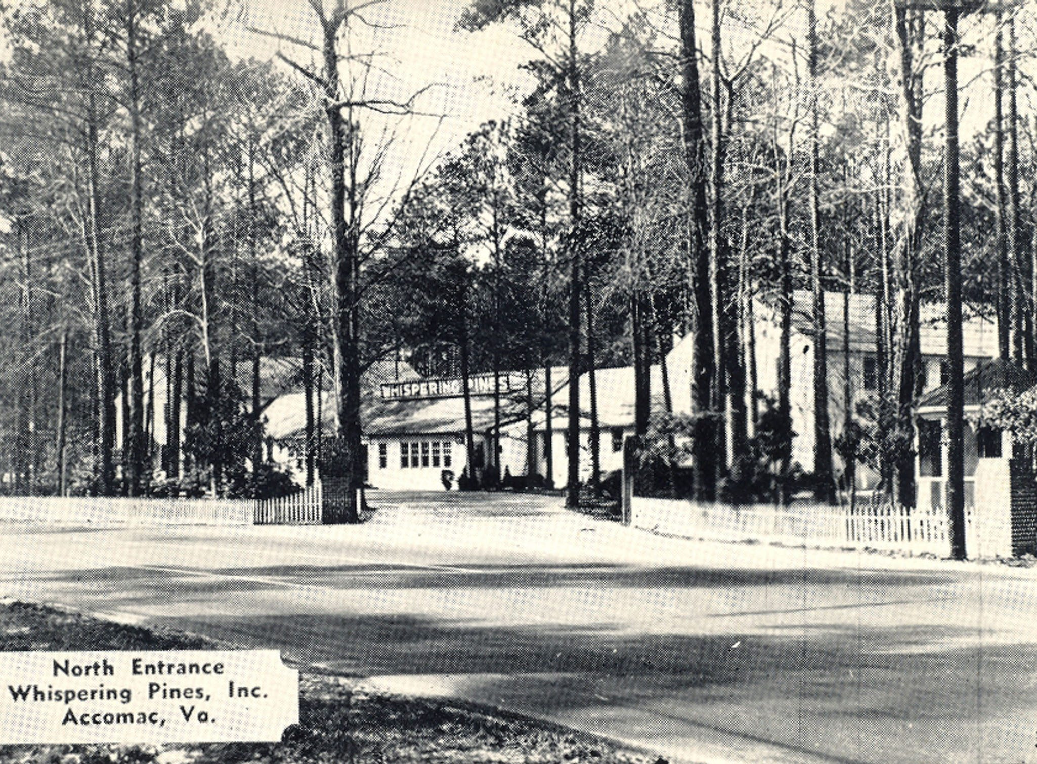 A 1930s photo of the former Whispering Pines Motel in Tasley. The tourist destination, which has been mostly vacant for over a decade, was set on fire Tuesday, March 12, 2013. Investigators believe the fire to be the work of an arsonist in Accomack County who has set more than 65 fires since November.