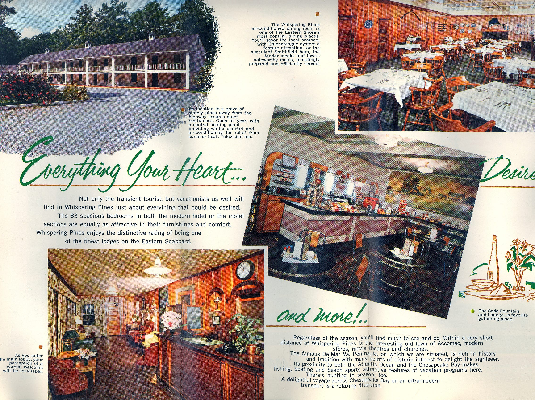 A brochure highlights the former Whispering Pines Motel in Tasley. The tourist destination, which has been mostly vacant for over a decade, was set on fire Tuesday, March 12, 2013.