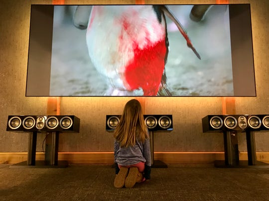 Peyton Benda, 6, sits in front of a television in the Audio Visual Integrations display at the 2019 Sioux Empire Home Show in Sioux Falls on Friday.