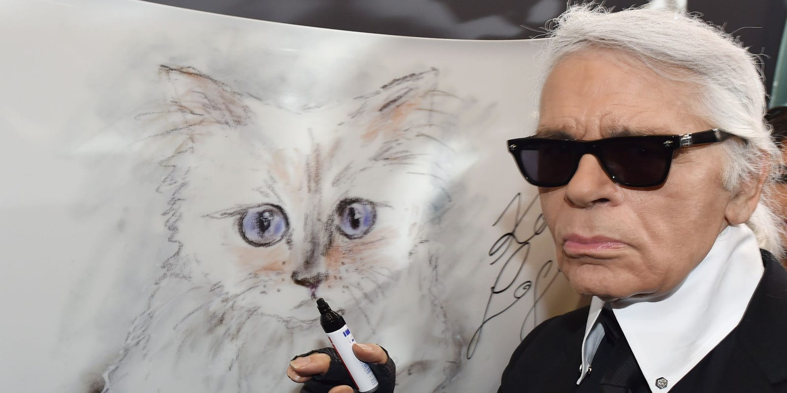 Karl Lagerfeld S Cat Could Be One Of Richest Pets After Inheritance
