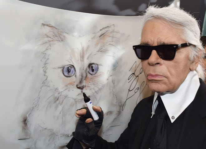 Karl Lagerfeld's cat, Choupette, is a celebrity in her own right