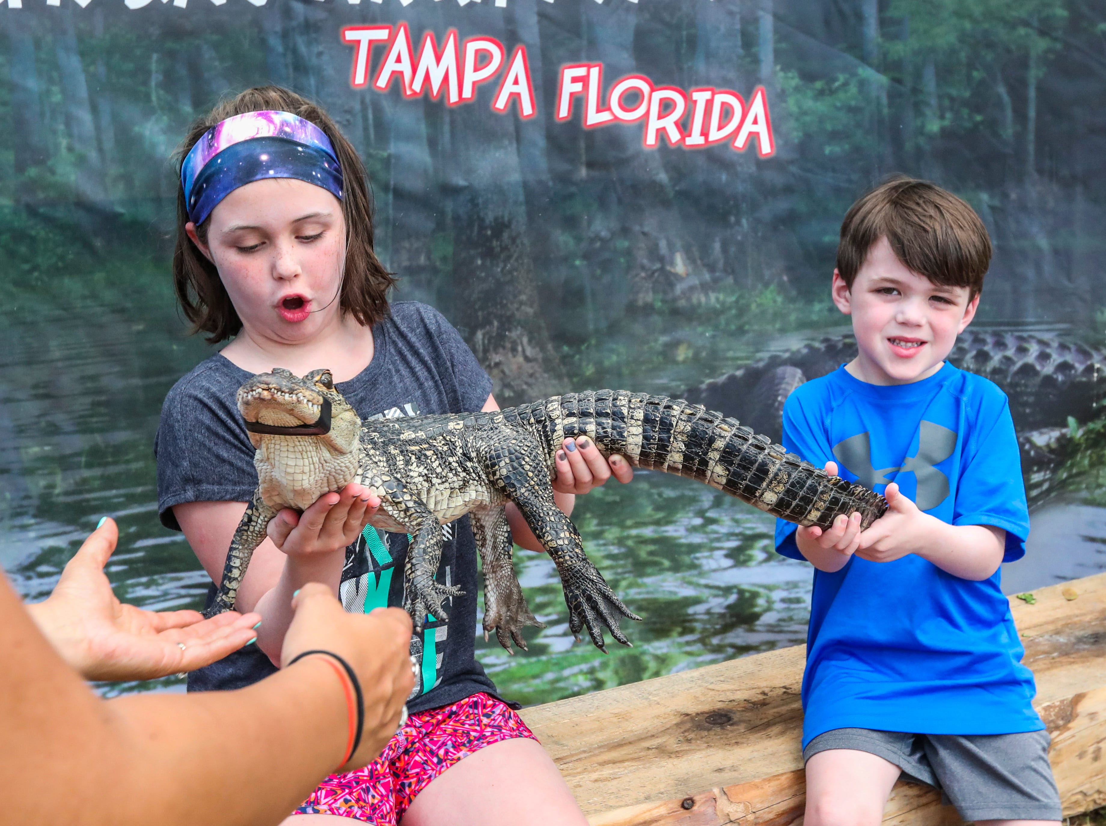 "Patrick Walsh, 4, tried to be brave as he and his sister, Erin, 8, held an alligator. ""I'll just hold the tail"", Patrick said. They were down from Cape Cod to visit their grandparents where were down snowbirding for the month. Cape Coral Florida's, official City bird was celebrated during the 17th Annual Burrowing Owl Festival at Rotary Park on Saturday, February 23, 2019. It was a fun day for the whole family, filled with entertaining and educational programs, hands-on activities for children, live animals, guided nature walks, butterfly house tours, bus tours to active owl burrows."