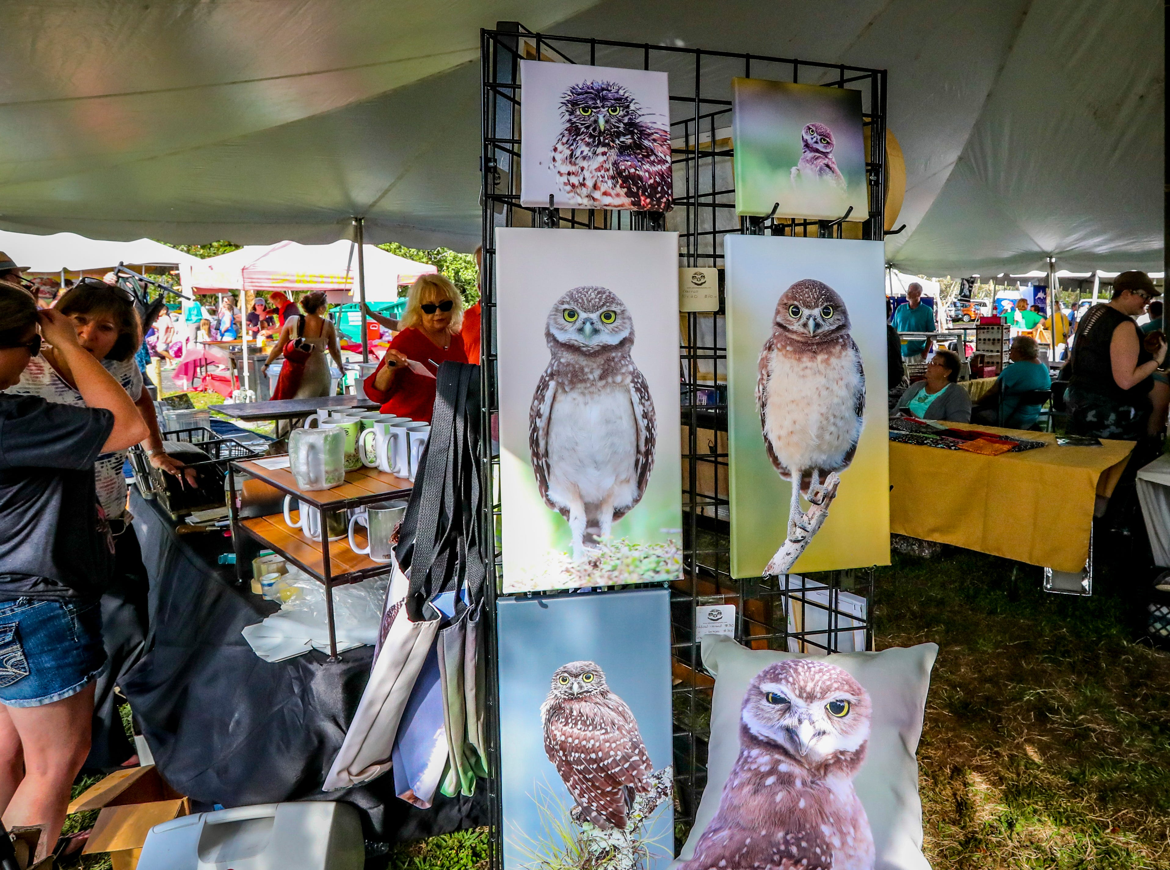 A booth has prints for sale of the burrowing owl. Cape Coral Florida's, official City bird was celebrated during the 17th Annual Burrowing Owl Festival at Rotary Park on Saturday, February 23, 2019. It was a fun day for the whole family, filled with entertaining and educational programs, hands-on activities for children, live animals, guided nature walks, butterfly house tours, bus tours to active owl burrows.
