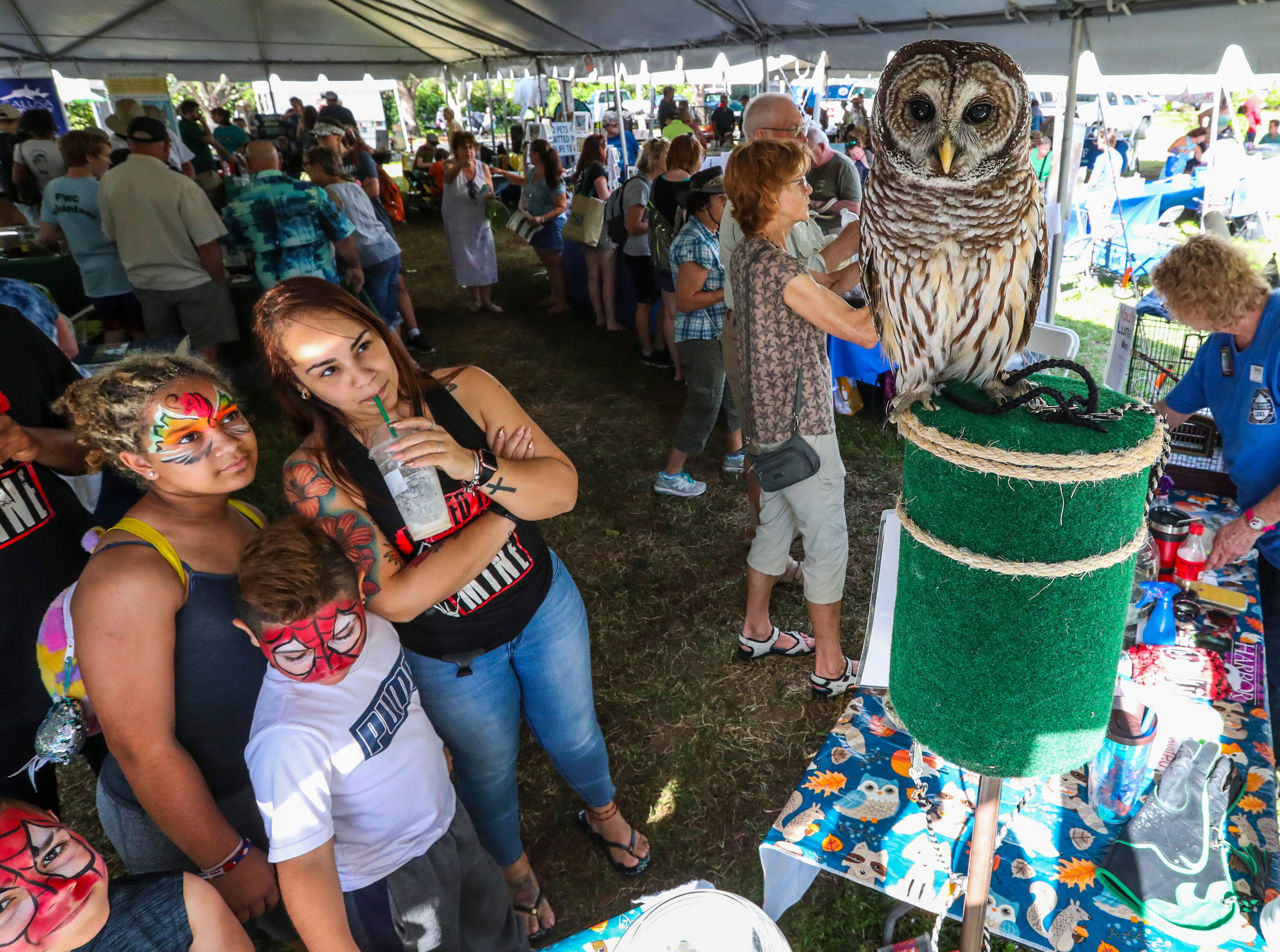 Cape Coral Florida's, official City bird was celebrated during the 17th Annual Burrowing Owl Festival at Rotary Park on Saturday, February 23, 2019. It was a fun day for the whole family, filled with entertaining and educational programs, hands-on activities for children, live animals, guided nature walks, butterfly house tours, bus tours to active owl burrows.