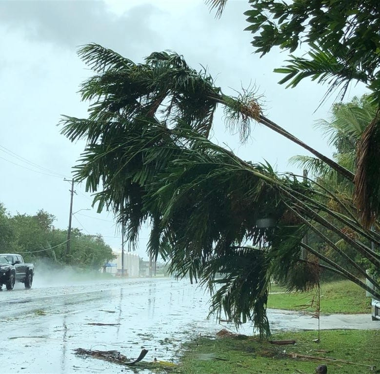 Wutip sends hundreds to typhoon shelters, knocks down trees