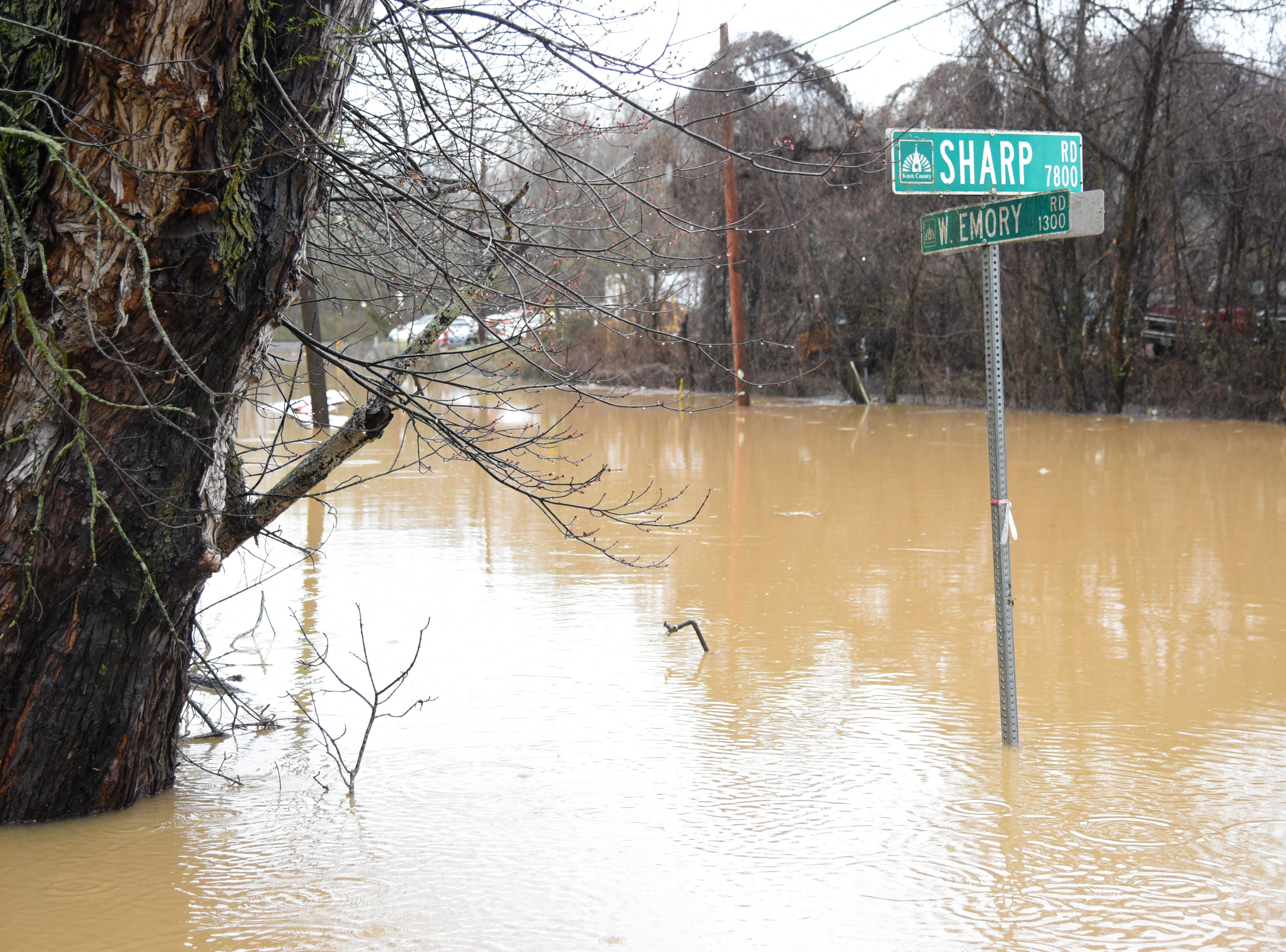 Beaver Creek overflows due to flooding at West Emory Road and Sharp Road in Powell Saturday Feb. 23, 2019. The Knoxville area could see between 2 and 3 inches of rain through the weekend.